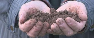 3. Beoordeel de bodemkwaliteit