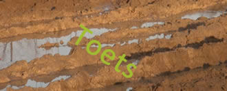 Toets 2 Bodemstructuur en organische stof
