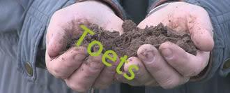 Toets 3 Beoordeel de bodemkwaliteit
