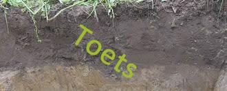 Toets 1 Bodems en grondsoorten